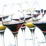 Verres à dégustation : Comment s'y retrouver ? – Le Figaro Vin